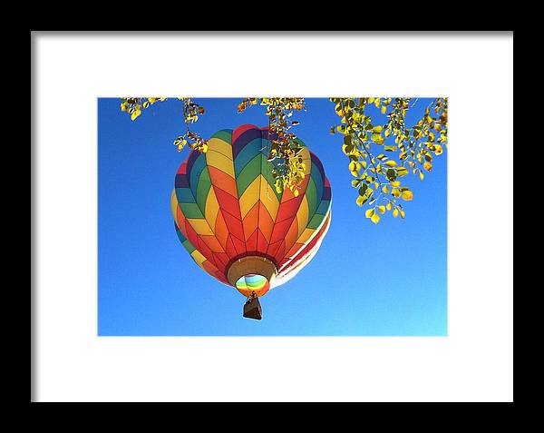 Hot Air Balloon Festival Framed Print featuring the photograph Soaring High by Adrienne Wilson