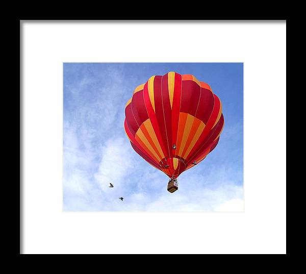 Soaring With The Birds Framed Print featuring the photograph Soaring With The Birds by Adrienne Wilson