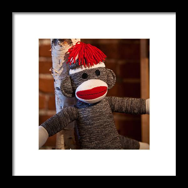Toy Framed Print featuring the photograph Sock Monkey by Edward Myers