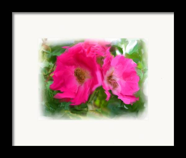Fowers Framed Print featuring the painting Soft Pink Flowers by Jonathan Galente