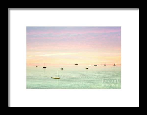 Kremsdorf Framed Print featuring the photograph Softness And Light by Evelina Kremsdorf