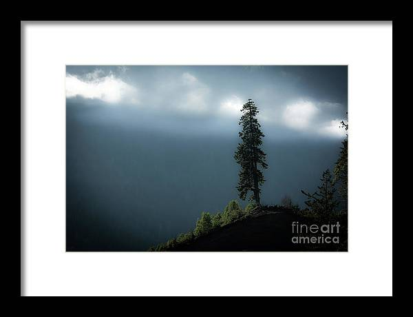 Framed Print featuring the photograph Solitary by David Hillier