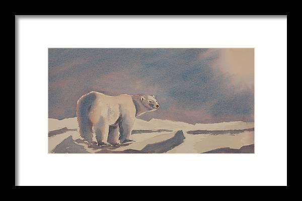 Polar Bear Framed Print featuring the painting Solitary Polar Bear by Debbie Homewood