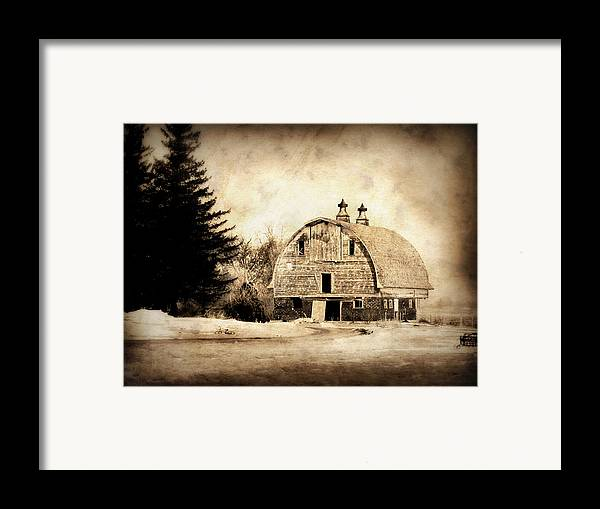 Barn Framed Print featuring the photograph Somethings Missing by Julie Hamilton