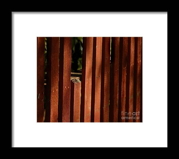 California Scenes Framed Print featuring the photograph Somethin's Missing by Norman Andrus