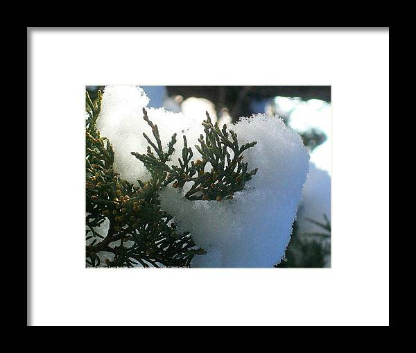 Sometimes-in-winter Framed Print featuring the photograph ''sometimes In Winter.....'' No.8, Tue--15jan2013 by Robert 'Standing Eagle'