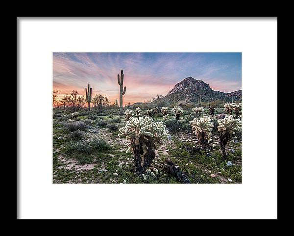 Landscape Framed Print featuring the photograph Sonoran Sunrise by Jim Painter