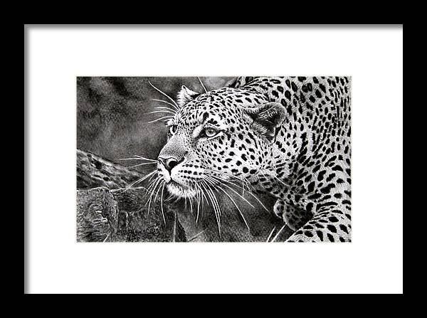 Leopard Framed Print featuring the painting Soot Painting by M D Parashar