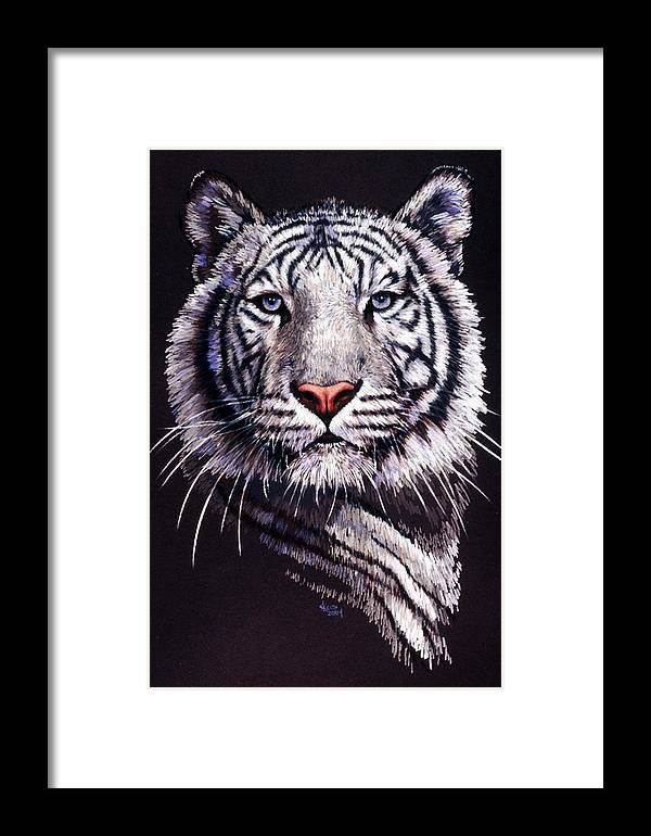 Tiger Framed Print featuring the drawing Sorcerer by Barbara Keith