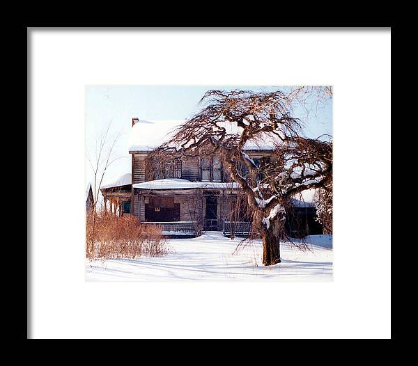Tree Framed Print featuring the painting Soulmates by Marina Petro