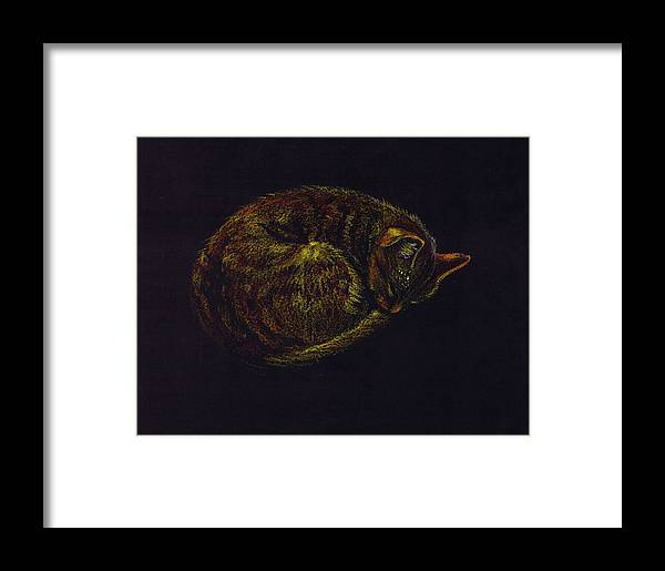 A Cat Soundly Asleep-oil Pastel Framed Print featuring the painting Sound Asleep II by Mui-Joo Wee