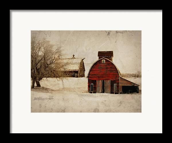 Barn Framed Print featuring the photograph South Dakota Corn Crib by Julie Hamilton