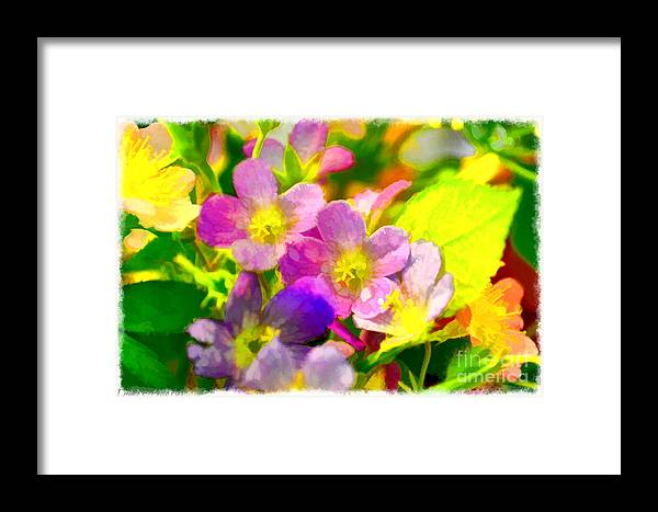 Tiny Framed Print featuring the photograph Southern Missouri Wildflowers 1 - Digital Paint 1 by Debbie Portwood