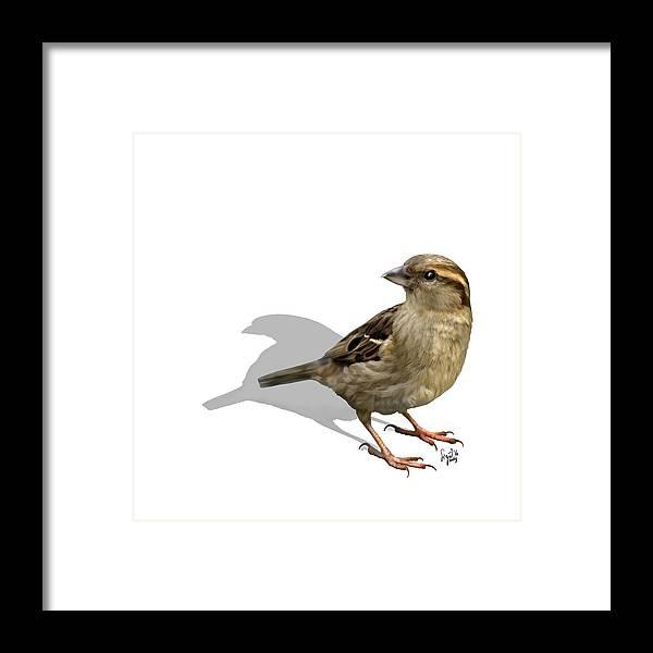 Birds Framed Print featuring the digital art Sparrow by Sigrid Van Dort