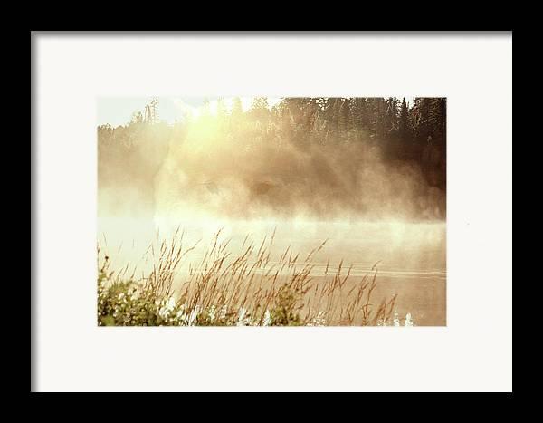 Digital Art Framed Print featuring the photograph Spirit Wolf by Peter Pauer