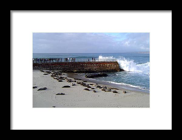 Digital Framed Print featuring the photograph Splash by Maribel McIntosh