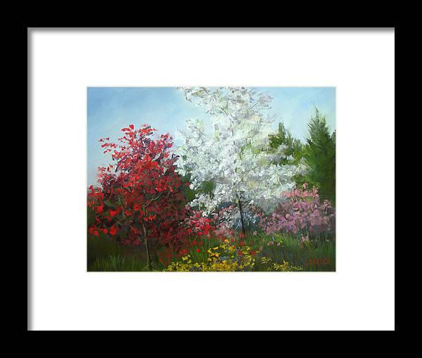 Meijer Garden Framed Print featuring the pastel Splash Of Color by Linda Preece