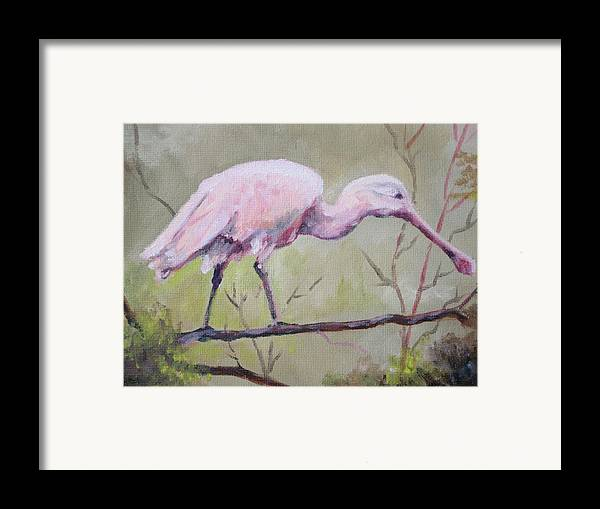 Bird Framed Print featuring the painting Spoonbill by Carol Mueller