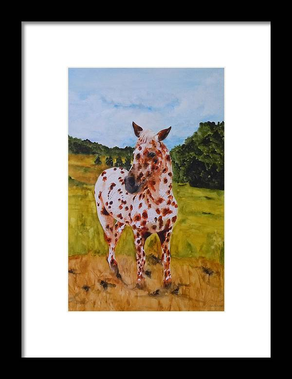 Horse Framed Print featuring the painting Spotted in Hawaii by Jean Blackmer