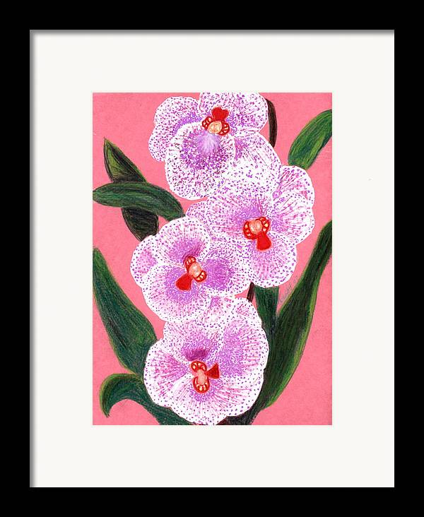 Floral Pink Orchid Framed Print featuring the drawing Spotted Orchid Against A Pink Wall by Carliss Mora