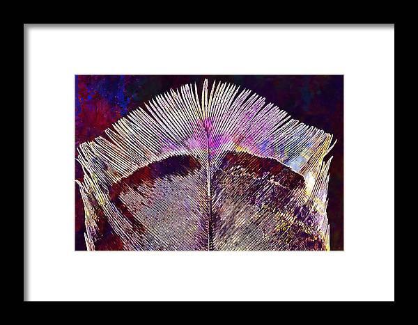 Spring Framed Print featuring the digital art Spring Bird Feather Turkey Feather by PixBreak Art