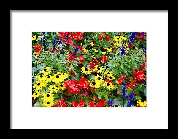 Floral Framed Print featuring the photograph Spring Bouquet by Sonja Anderson