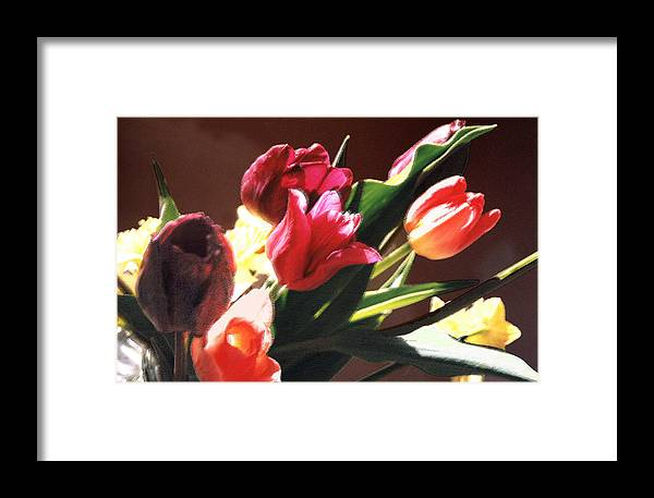 Floral Still Life Framed Print featuring the photograph Spring Bouquet by Steve Karol