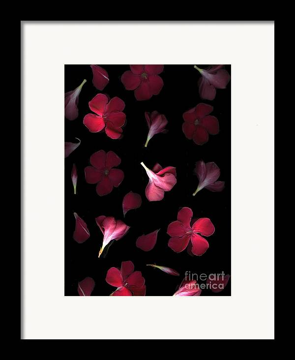 Cslanec Framed Print featuring the photograph Spring by Christian Slanec