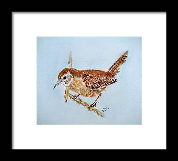 Birds. House Wren. Wildlife. Framed Print featuring the painting Spring Cleaning by Brenda Sauve