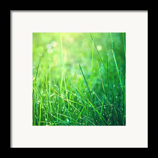 Square Framed Print featuring the photograph Spring Green Grass by Dirk Wüstenhagen Imagery