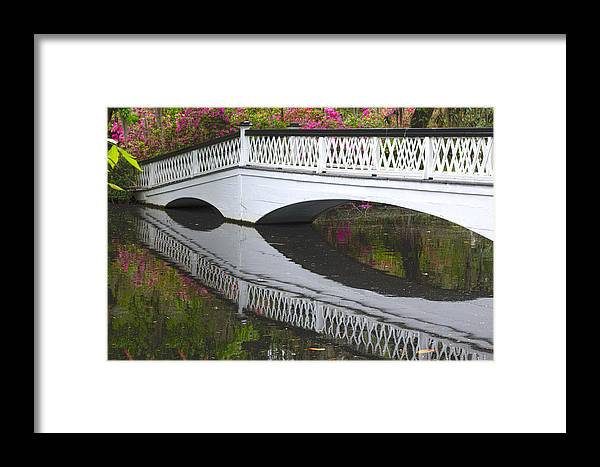 Magnolia Gardens Framed Print featuring the photograph Spring Has Come... by Shannon Hewitt-Buck