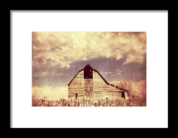 Barn Framed Print featuring the photograph Spring In Kansas by Julie Hamilton