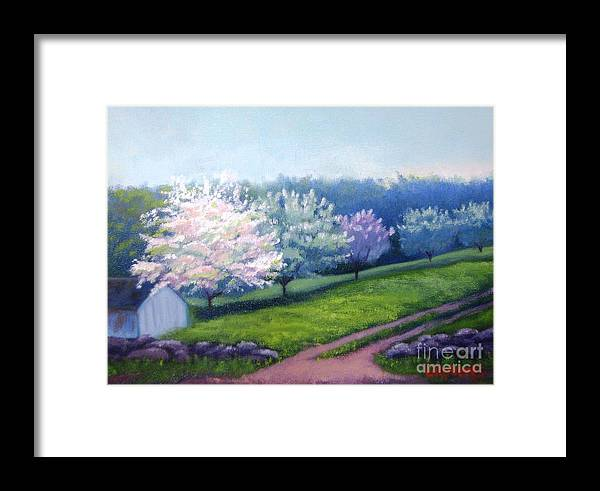 Apple Blossoms Framed Print featuring the painting Spring In New England by Laura Roberts