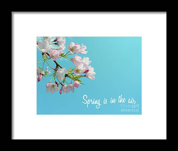 Spring Framed Print featuring the photograph Spring Is In The Air by Cloudy Theater