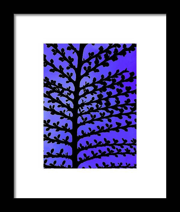 Spring Framed Print featuring the photograph Spring Leaf Buds by Colin Drysdale