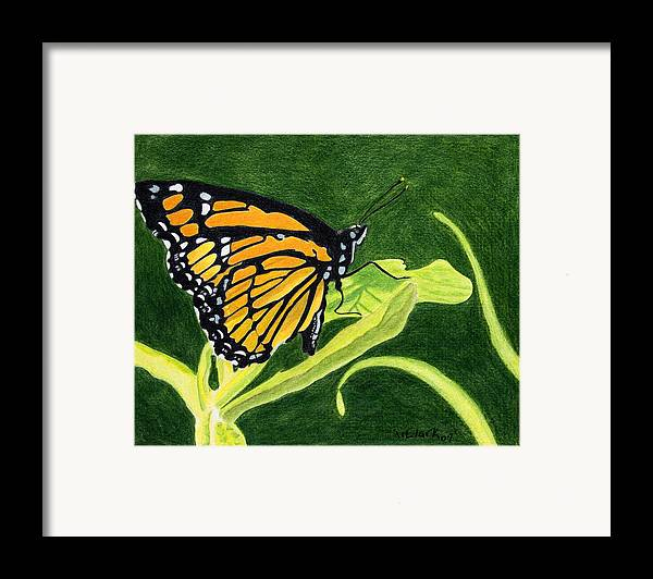 Animals Framed Print featuring the painting Spring Monarch by Wade Clark