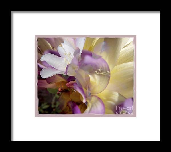 Flower Framed Print featuring the digital art Spring Overture by Chuck Brittenham