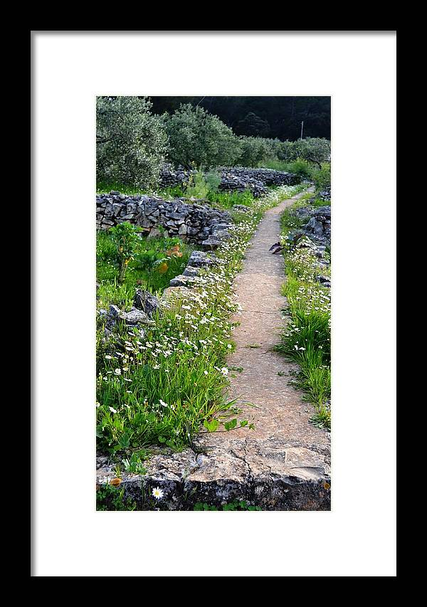 Nature Framed Print featuring the digital art Spring Path/loving by Karmen Skaro