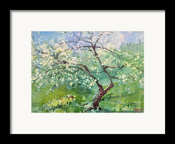 Plum Tree Framed Print featuring the painting Spring Plum by Elizabeth Carr