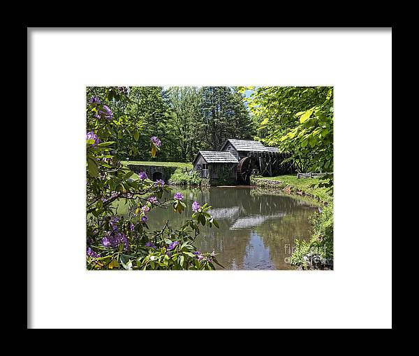 Mabry Framed Print featuring the photograph Spring Reflections Of An Ancient Mill by Brenda Kean