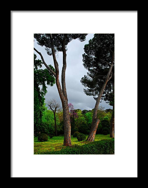Storm Framed Print featuring the photograph Spring Storm Over Park Retiro by Georgia Nick