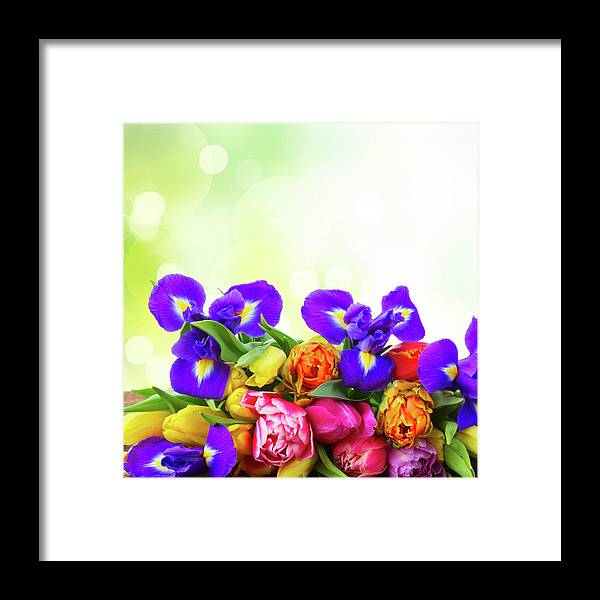 Easter Framed Print featuring the photograph Spring Tulips And Irises by Anastasy Yarmolovich
