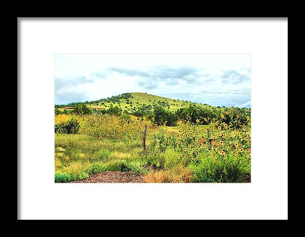 Photography Framed Print featuring the photograph Springerville Sunflowers 0060 by Sharon Broucek