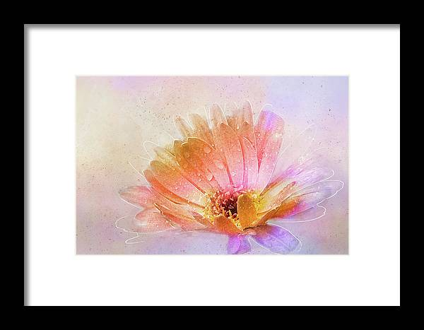 Daisy Framed Print featuring the digital art Spring's Own Herald by Terry Davis