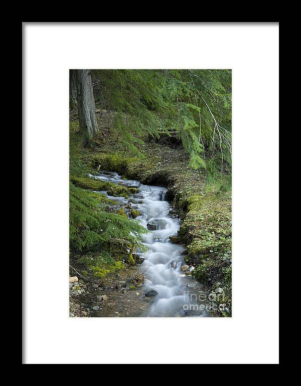 Stream Framed Print featuring the photograph Springtime Creek by Idaho Scenic Images Linda Lantzy