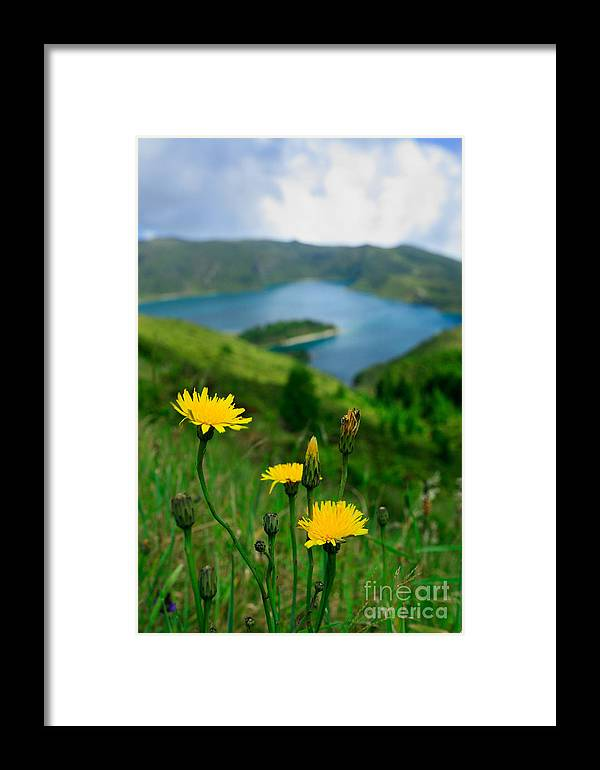 Caldera Framed Print featuring the photograph Springtime In Fogo Crater by Gaspar Avila