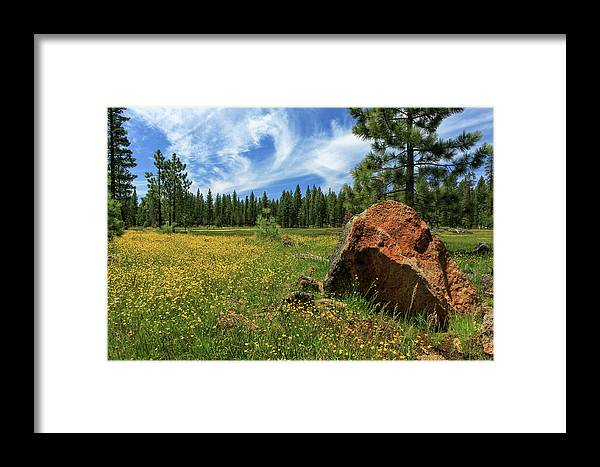 Landscape Framed Print featuring the photograph Springtime In Lassen County by James Eddy