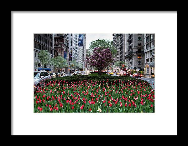 Nyc Framed Print featuring the photograph Springtime On Park Avenue by Robert J Caputo