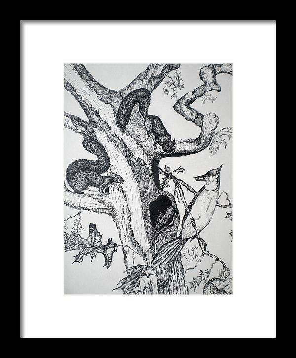 Nature Framed Print featuring the drawing Squirrels And Bird by Tammera Malicki-Wong