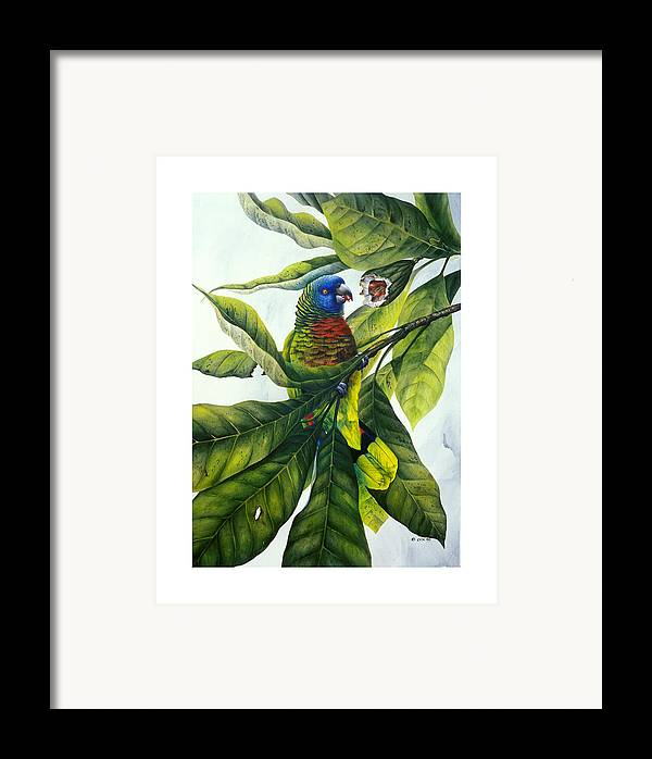 Chris Cox Framed Print featuring the painting St. Lucia Parrot And Fruit by Christopher Cox